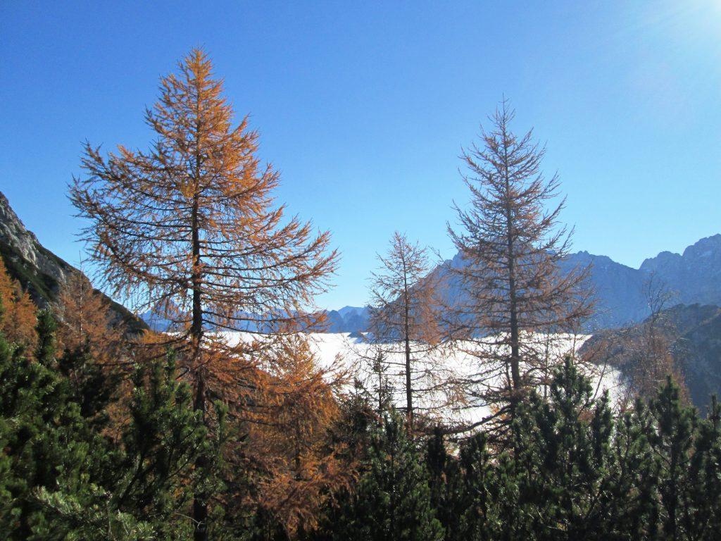 Mare di nubi in Val Saisera